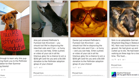 The Best 2013 Social Marketing Campaigns - Chief Marketer | Social Media | Scoop.it