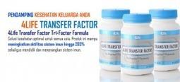 Dapatkan Produk 4Life Transfer Factor di Tokoina.com | Tokoina | Scoop.it