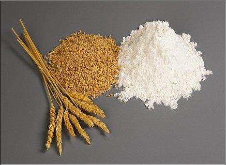 "Celiachia, Fazio: l'Italia difende l'etichetta ""senza glutine"" | FreeGlutenPoint | Scoop.it"