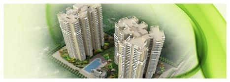 Top Real Estate Developers in Noida Extension-Real Estate Developers in Noida, Delhi NCR   Keltech Infrastructure   Real estate noida   Scoop.it