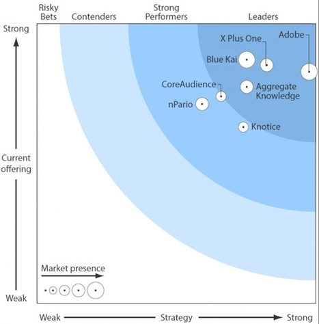 New Forrester Study Singles Out Top Data Management Platforms | Customer Centric Innovation | Scoop.it