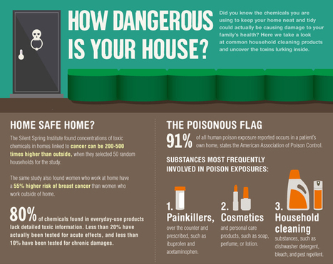 Surprise Toxins In Your Home | green infographics | Scoop.it