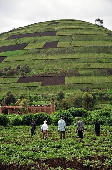Making Ecosystem Services Count   CGIAR   Resilience   Scoop.it