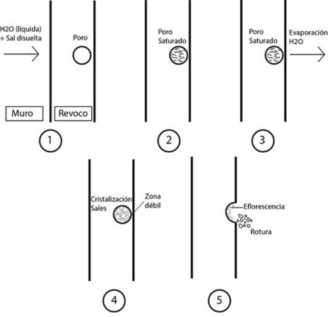 Humedades por capilaridad Criptoflorescencias | Rehabilitación y Patología en Construcción | Scoop.it