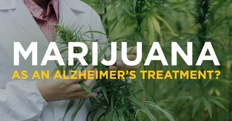 Marijuana as an Alzheimer's Treatment? | The Peoples News | Scoop.it