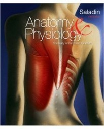 Test Bank For » Test Bank for Anatomy & Physiology, 5th Edition: Kenneth Saladin Download | Anatomy & Physiology Test Bank | Scoop.it