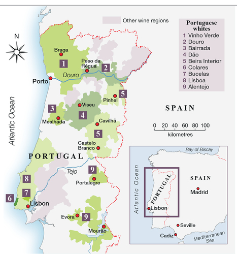 Whites Wines to excite you in Portugal | Wine Liquid Lisbon | Scoop.it