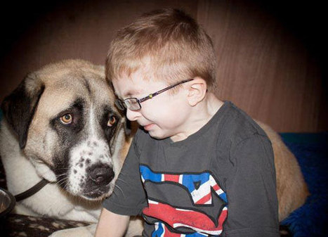 This Little Boy With a Rare Condition Lived His Life in Fear. But Then He Met This 3-Legged Dog. | John Duffy's Personal Empowerment | Scoop.it