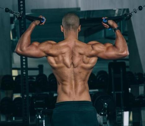 15 Negative Effects of Having a Low Body Fat Percentage | Fitness For All | Scoop.it