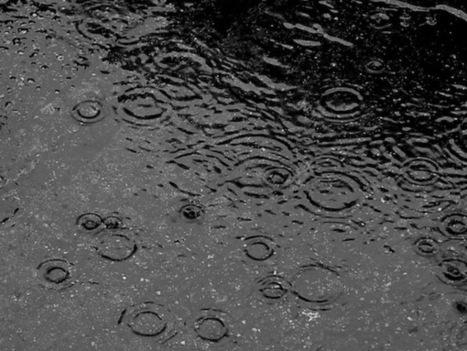 What Makes Rain Smell So Good? | Random interesting | Scoop.it