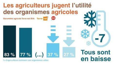 Organismes agricoles: les agriculteurs les estiment utiles mais... | Actualités de l'élevage | Scoop.it