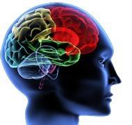 NetPublic » Carte heuristique : méthodologie pour créer des cartes mémorisation, imagination et organisation   Cartes mentales   reVEILLE doc - NETeCLAIR   Scoop.it