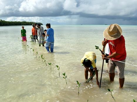 Nos sociétés ne sont pas prêtes à affronter les conséquences des changements climatiques [vidéo] - notre-planete.info | Mes passions natures | Scoop.it