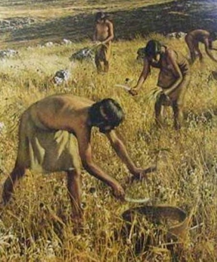 DNA analyses reveal genetic identities of world's first farmers | Archaeology News Network | Kiosque du monde : A la une | Scoop.it