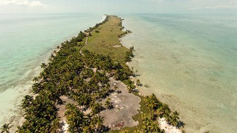 Leonardo DiCaprio Builds an Eco-Resort | Eco Friendly Cloud Computing | Scoop.it