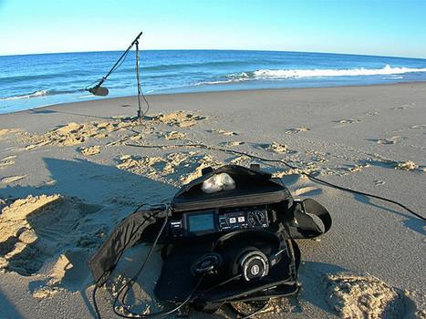 Beach Soundscape Recording | DESARTSONNANTS - CRÉATION SONORE ET ENVIRONNEMENT - ENVIRONMENTAL SOUND ART - PAYSAGES ET ECOLOGIE SONORE | Scoop.it