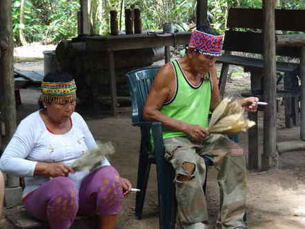 Singing to the Plants: A Guide to Mestizo Shamanism in the Upper Amazon | quantum physics | Scoop.it
