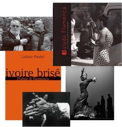 Dégustation littéraire - Jean-Louis Duzert, Ludovic Pautier : Balada flamenca | Ma Cave En France | Scoop.it