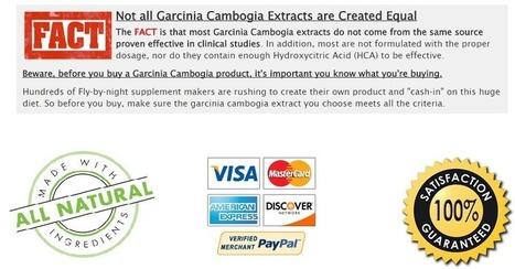 Garcinia Cambogia India | Web Hosting | Scoop.it