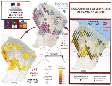 Lutte contre l'orpaillage illégal : 275 chantiers de moins en deux ans - lekotidien.fr | Guyane orpaillage illégal | Scoop.it