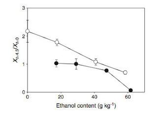 Estrategia para la prevención de la contaminación bacteriana mediante la adición de etanol exógeno en la producción de bioetanol   Microbiología Industrial   Scoop.it