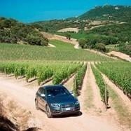Siddùra guida Audi alla scoperta dei suoi vigneti - Vini di Sardegna e Cantine - Le Strade del Vino | Le Strade del Vino - Il portale sull'enogastronomia in Sardegna | Scoop.it