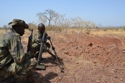Exercice final pour le GTIA Balanzan | GUERRE AU MALI - FRENCH MILITARY OPERATIONS IN MALI | Scoop.it