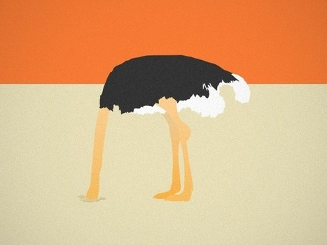 """The Ostrich Problem"" and The Danger of Not Tracking Your Progress 