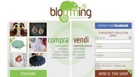 Negozi virtuali, blog e social network: la nuova frontiera dell'e-commerce   Blomming   Scoop.it