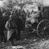 Les archives de commissions du Sénat durant la Grande Guerre - Actualitté.com | Genéalogie | Scoop.it