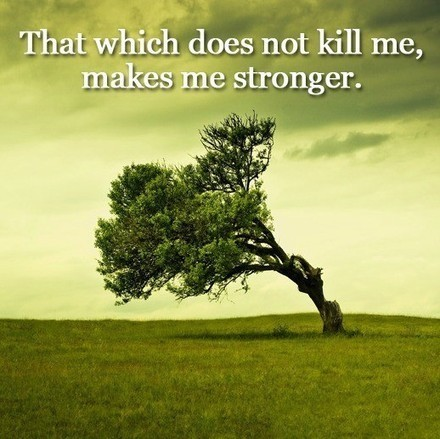 That which does not kill me... | Quote for Thought | Scoop.it