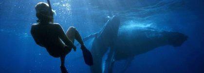La Méditerranée à l'honneur du Congrès internationales sur les ... - Figaro Nautisme | Ocean | Scoop.it