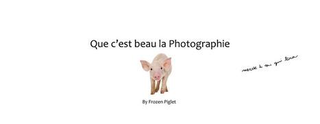 Que c'est beau la photographie: Education des masses | Liens photo pour le cerveau | Scoop.it