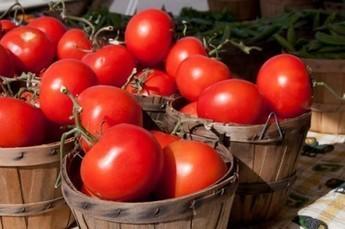 تغذية - ما هو الغذاء؟ | تغذية | Scoop.it