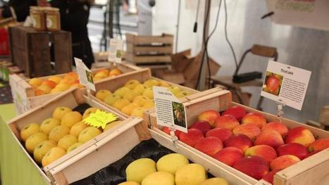 Sans supermarché mais avec Internet, consommer mieux et local coûte moins cher | Food issues | Scoop.it