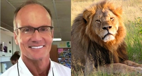 Barmaid: Lion killing #dentist Walter #Palmer shared photo and bragged about killing #Cecilthelion | Messenger for mother Earth | Scoop.it