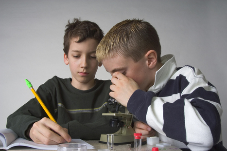 Cool-Science-Projects.com: Elementary Science Projects | 5th Grade Science Fair Ideas | Scoop.it