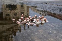 This is what politicians debating global warming will look like soon | Ecopsychology | Scoop.it