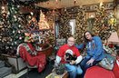 Couple display 80 Christmas trees in their Home - Syracuse.com   Christmas Trees and More   Scoop.it