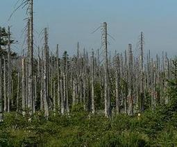 China wrestles with acid rain threat | pollution  geography | Scoop.it