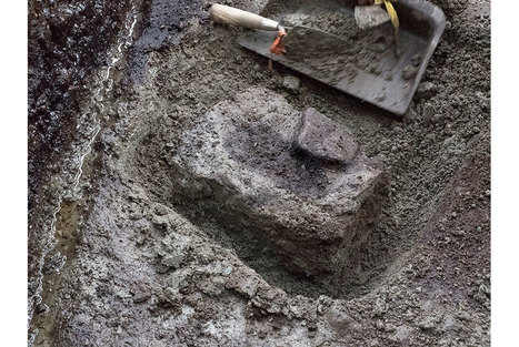 Oldest North America footprints discovered by researchers on Canada west coast | Art Daily | Kiosque du monde : Amériques | Scoop.it