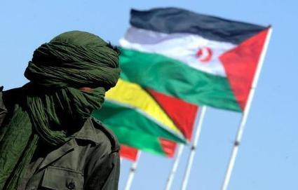 Change must come soon for Western Sahara youth | ROAR Magazine | Daraja.net | Scoop.it