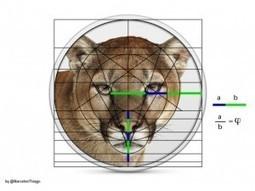 Las Matemáticas son bellas | Tic-ZA - Blogs hoy.es | Enseñanza de matemáticas a adultos | Scoop.it