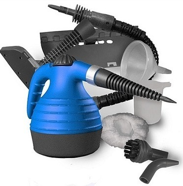 The Bed Bug Steamer Method   Pictures of Bed Bugs  Pest Control Information   Cara Cepat Hamil   Scoop.it