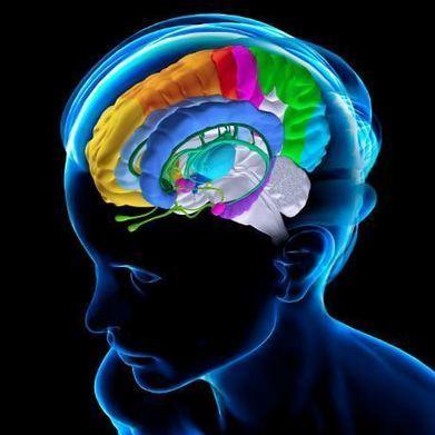 Ecco perché ricordare significa dimenticare | Neuroscienze applicate | Scoop.it