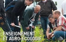 Quatre scénarios pour l'avenir de l'agriculture | Graines de doc | Scoop.it