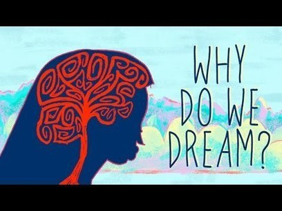 Why Do We Dream? || Life Lesson | Your Personal Best | Scoop.it