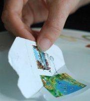 ¿Por qué no puedo comprar sellos y tan solo intercambio? | Filatelia ... | SOFIMA Online | Scoop.it