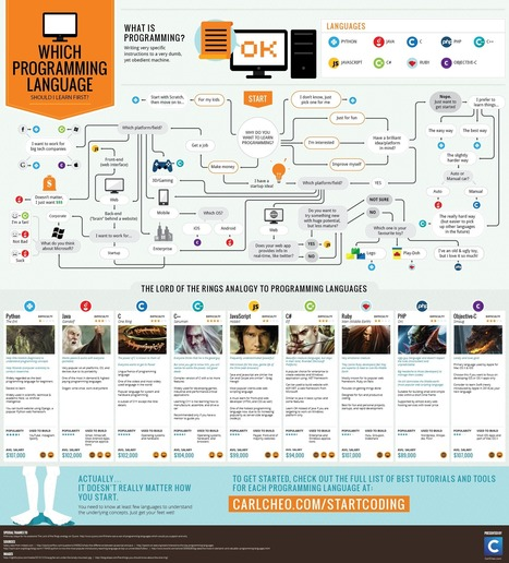which-programming-language-should-i-learn-first-infographic.png (2000x2210 pixels) | FP Informática | Scoop.it