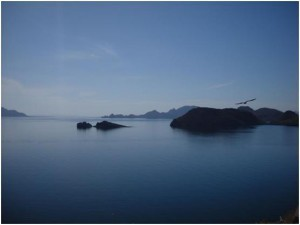 Evaluating the Loreto Bay National Park, Mexico   The Joy of Mexico   Scoop.it